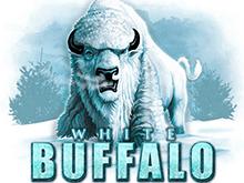 Заберите крупный выигрыш, запустив игровой аппарат White Buffalo